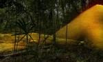 Sprawling Maya network discovered under Guatemala jungle