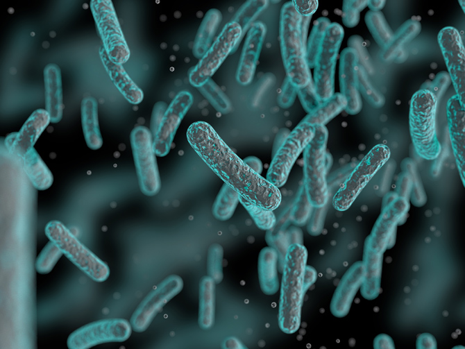 Bacteria that drive colon cancers identified: Study