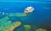 Great Barrier Reef: Swimming deaths prompt new safety rules
