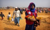 'They want to erase us.' Hunger used to target Rohingya
