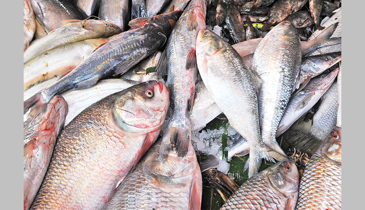 Bangladesh attains autarky  in fish, meat production