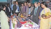 BSCIC's spring festival kicks  off in Dhaka