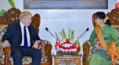 UK urges 'independent' probe into Rohingya crisis