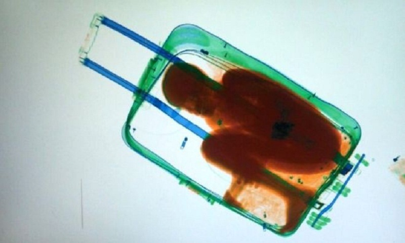Spain: Father of migrant boy found in suitcase in Ceuta freed