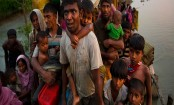 Myanmar parliament approves $15M for Rakhine border fence