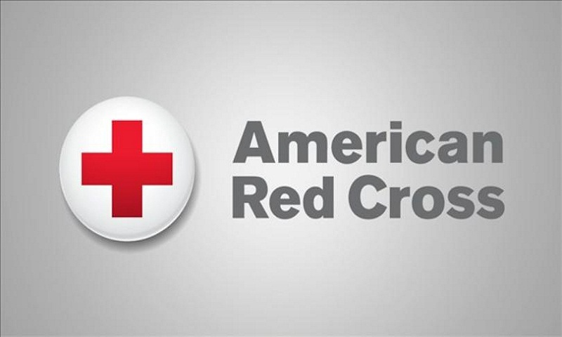 Red Cross: 21 resigned or fired since 2015 in sex cases