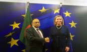 European Union reiterates support for resolution of Rohingya crisis