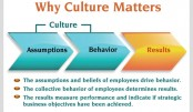 Shaping organisational culture