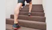 Stair Climbing: The Ultimate Workout