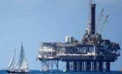 Oil sector needs 2020 investment vision to meet demand