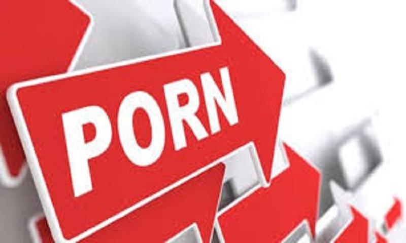 Porn check critics fear data breach