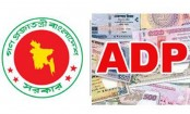 NEC to approve revised ADP today