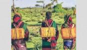 Creating The Next Generation Of Humanitarians