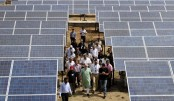 Developing countries  must support solar projects: Modi