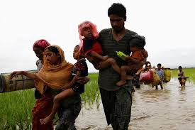 'Trump admin looking to work with India on Rohingya issue'