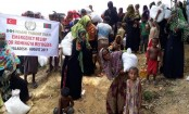 UN appeals for nearly $1bn for Rohingya refugees
