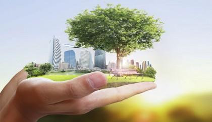 Sustainability key to graduation from LDC