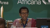 African Union expects cooperation with China on free trade area