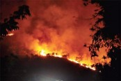 Death toll in India's forest fire rises to 17
