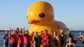 Giant inflatable duck found off Perth after Australian search