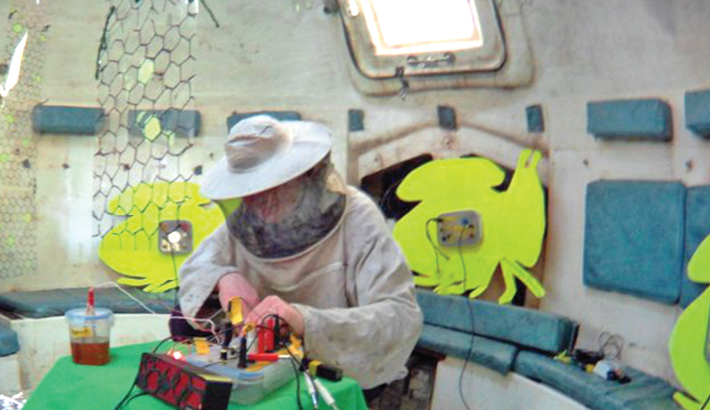 Sound of bees makes electronic music