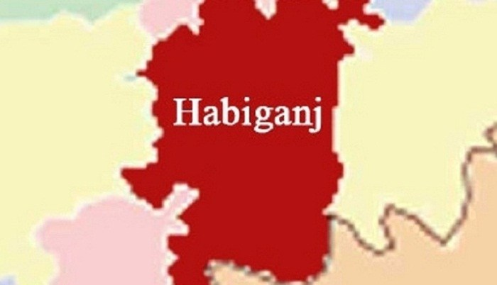 Habiganj road crash kills 2