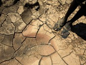 Warming climate to displace millions: WB