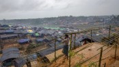 Rohingya: WHO appeals for int'l community support