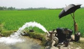 Promoting less water-consuming crops in Barind region stressed