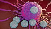 Newly created compound boosts anti-cancer immunity