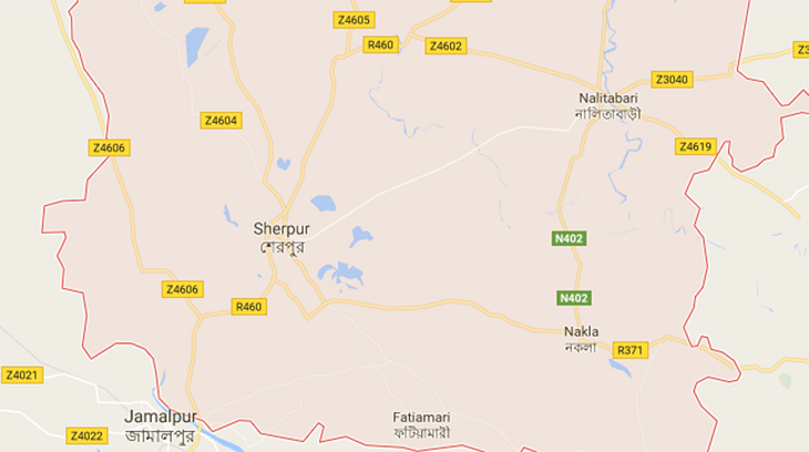 Two killed in Sherpur road crash