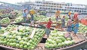 City market abounds with watermelons