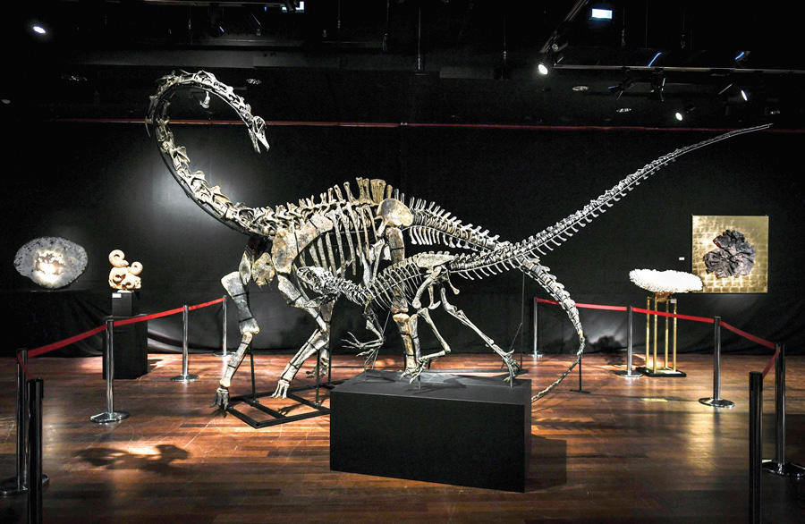 Anyone want to buy a dinosaur? Two on sale in Paris