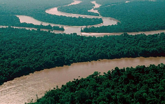 Toxic levels of arsenic in Amazon basin well water: study