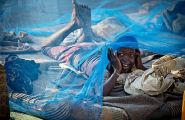 Novel bed net provides greater protection against malaria