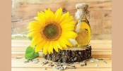 Sunflower Oil:  A Healthy Alternative