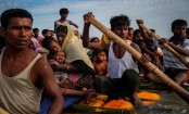 Reuters wins Pulitzers for Rohingya photography