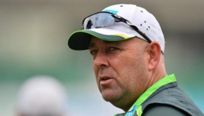 Cricket Australia to name Lehmann replacement in 'coming weeks'