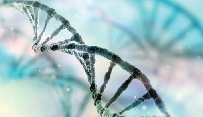 Genes behind deadly heart conditions found