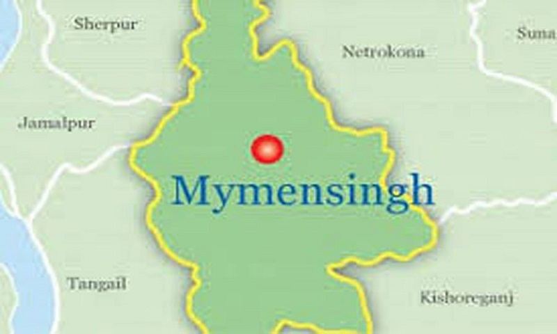 Father, son killed in Mymensingh road crash