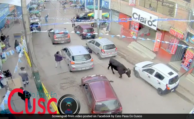 Escaped bull sparks chaos in Peru shopping mall