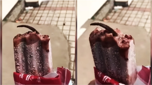Chinese woman shocked to find dead rat's tail sticking out of ice cream (Video)