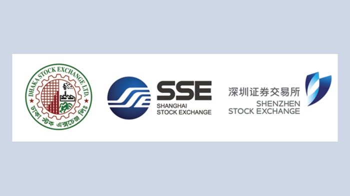 Chinese consortium approved as DSE's strategic partner