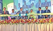 Diversify agro-products to boost exports: Matia