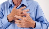 Gut bacteria linked to cause of heart attack