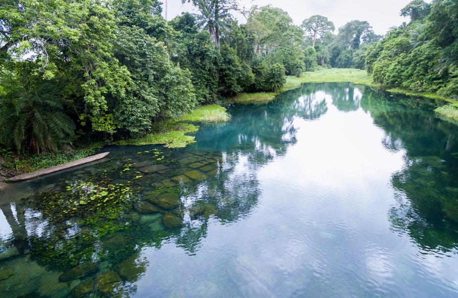 New study explains how climate change can impact fragile river ecosystems