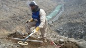 Taliban kill 5 workers clearing land mines:Afghan official