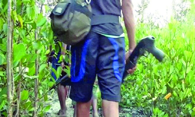 57 Sundarban pirates surrender