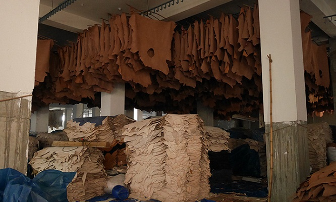 Tannery estate not fully functional, growth reducing rapidly