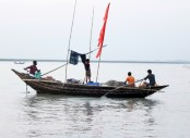 No sign of Hilsa in Meghna River